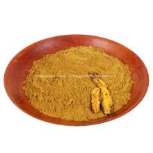 Polvo de materia prima Coptis Polvo de berberina Polvo de Coptis