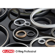 Spring Packing Seals Used in Oil Gas Valve