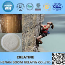 China manufacture popular muscle creatine top quality