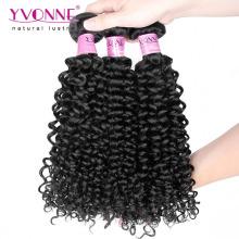 Grade 7A Malaysian Curly Brazilian Human Hair