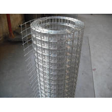 Welded Wire Mesh Panel or Roll