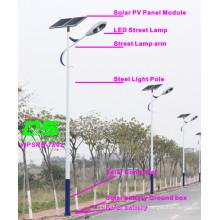WPSRR-7802 3~15m Municipal Road Hot DIP Galvanized Steet Light Pole style