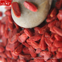 Hot sale wholesale grain-goji berry
