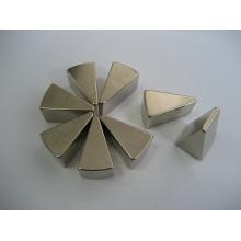 Imanes permanentes de la tierra rara, forma del triángulo
