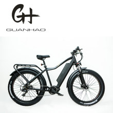 Us MID Motor Bafang 1000W 21A 4.0 Fat Tire Mountain Electric Bike