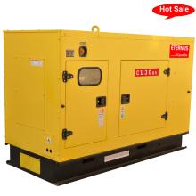 Главная Дизельный генератор бесшумного типа (BU30KS)