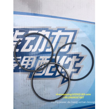 Weichai Dieselmotor Wp4 / Wp6 Kolbenring 13065822