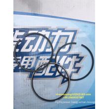 Weichai Diesel Engine Wp4/Wp6 Piston Ring 13065822