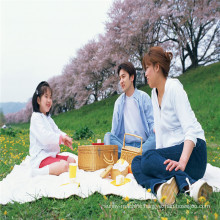 Family Picnic High Transparency Heat Sealable Film