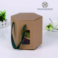 Cardboard box for eyelashes extension