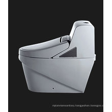 Smart toilet best quality (TZ341M/L)