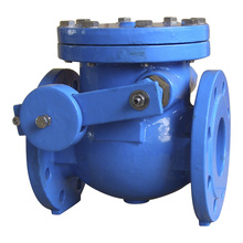 BS 5153 Double Flange Swing Check Valve with Lever Weight