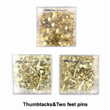 Two Feet Pins for office use