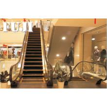 Escalier d'intérieur avec largeur d'échelle de 30 degrés 600 mm