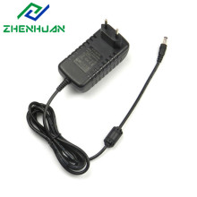 12V3A Europe Plug CC+CV Lithium Titanate Power Charger