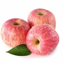 Prix en gros doux rouge de fuji de pomme fraîche de Chine