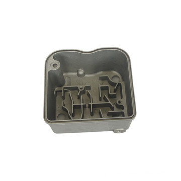 Customized Die Casting Housing for Auto Part (DR345)