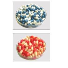 Cápsula de gelatina bovina HPMC
