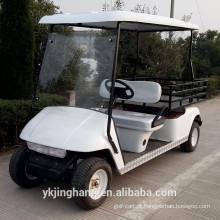 Veículo utilitário elétrico branco com 2 assentos da China (continente) para venda