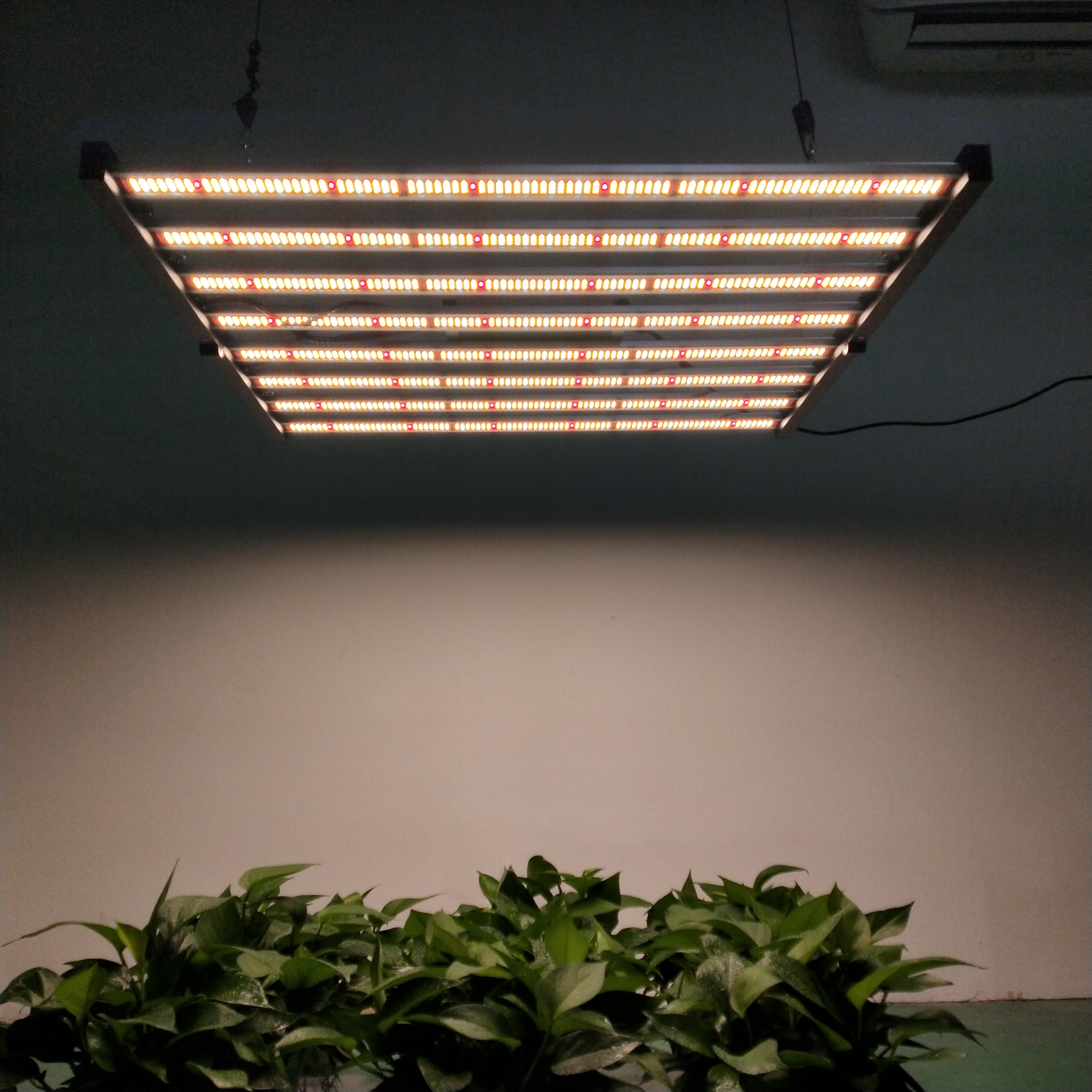 Led Grow Bar Lm301B
