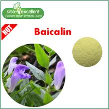 Natural Baical Skullcap Extract Baicalin