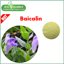 Goods high definition for Extract Powder Natural Baical Skullcap Extract Baicalin supply to Central African Republic Manufacturers