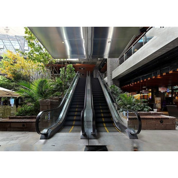 Indoor Commercial Passenger Escalator for Supermarket by Experienced Manufacturer