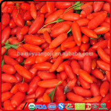 Goji seeds for sale goji berries for weight loss o que e goji berry