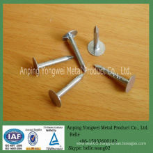 YW--galvanized umbrella head roofing nail