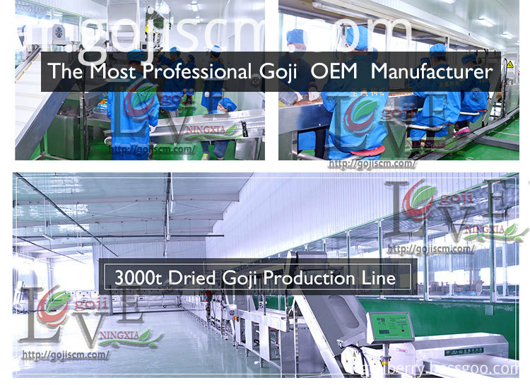 Certified Organic Goji Berries production line