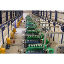 Googol Brand Diesel / Gas Electric Generator MW Power Plant