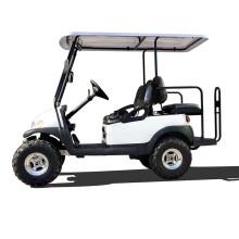 48V batterie chargée design personnalisé intérieur et extérieur des véhicules électriques à des fins touristiques