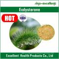 Cyanotis Arachnoidea Extract Ecdysterone