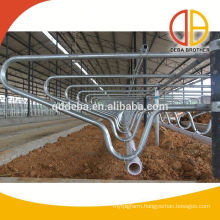 Galvanized Cow Free Stall Agriculture Farm Equipment