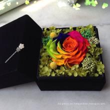 colores / tintes para flores reales / plantas / flores secas / PreservedFreshFlower