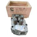 Supply Cummins Engine Parts K19 Cylinder Head 3646323