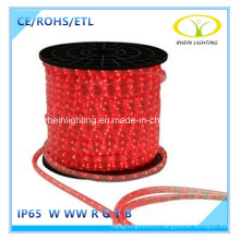Ce RoHS Approved Flexible LED Strip Light for Hotel