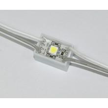 5050 1LED Warm White 12*20mm LED Module