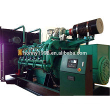 1250kVA Leroy Somer Alternator Power Generator Gas Engine