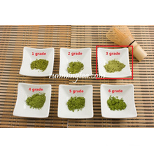 Pó orgânico do matcha do chá verde, chá verde do Matcha
