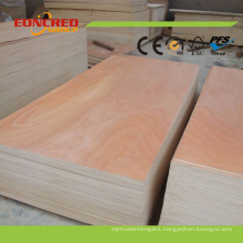 Linyi 4*8 Concrete Form Plywood