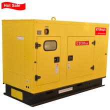 Стабильный дизель-генератор мощностью 24 кВт (BU30KS)