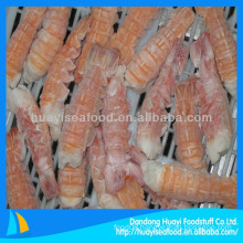 Good quality and best fresh frozen scampi