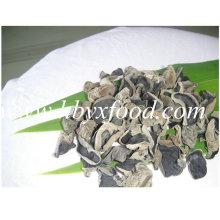 Bonne qualité écouteur de champignon noir