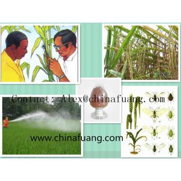 Agrochemicals Kohl Caterpillar Eco-Friendly Gemüse Insektizid Schädlingsbekämpfung Bacillus Thuringiensis