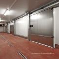 Qualitäts-niedrige Kosten-Kühlraum-Raumsysteme für Kartoffel