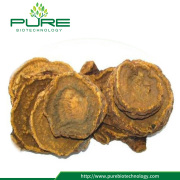 Wholesale rhubarb slice/DA HUANG herbal medicine