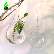 flor de vidrio botella hidroponia colgando florero