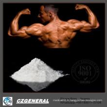 Poudres en vrac de catégorie de matières premières GMP de matières premières Sarms Yk11 pour le bodybuilding