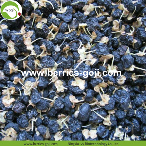 Factory Supply Dried Wild Black Goji